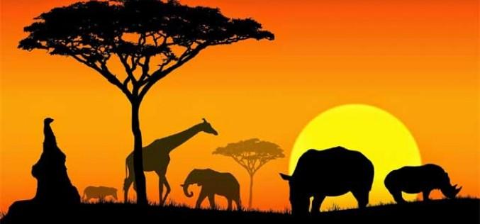 SIM África, la nueva tarjeta de Lebara Móvil