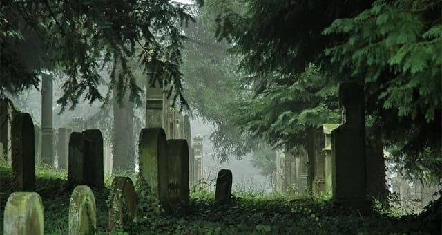 cementerio de OMV