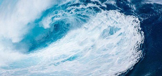 Ocean's vuelve a ofrecer fibra y ADSL gracias a Wialink