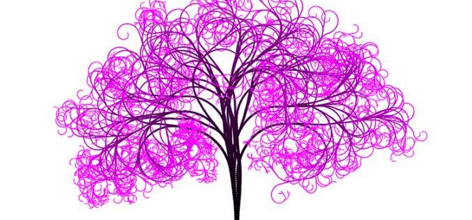 PinkBear y Lolo Phone, las ramas de Fi Network para captar más clientes