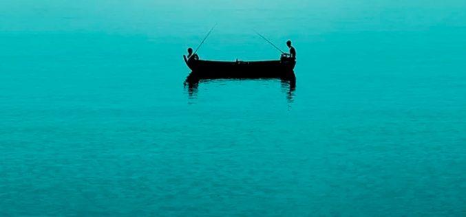 Fi Network pesca a 200.000 clientes en menos de un año